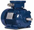 Products Air Motor Technology Motors And Industrial